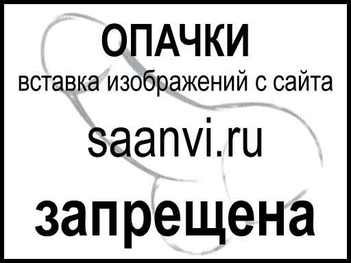 saanvi.ru/img/yandex_direct/nastroyka_yandex_direct.jpg